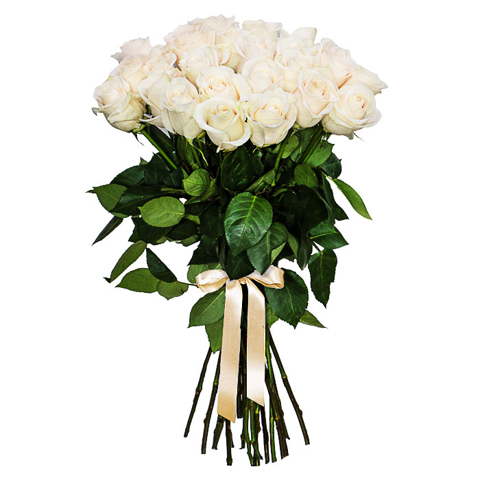 Букет из белых 25 белых роз (букет, цветов метро
